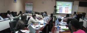 A session during the inception meeting